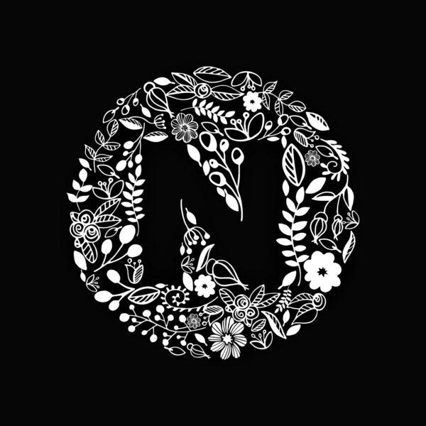 n-logo-2